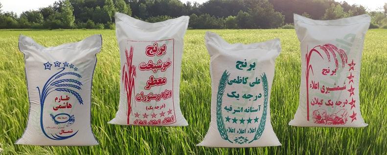 انواع برنج ایرانی